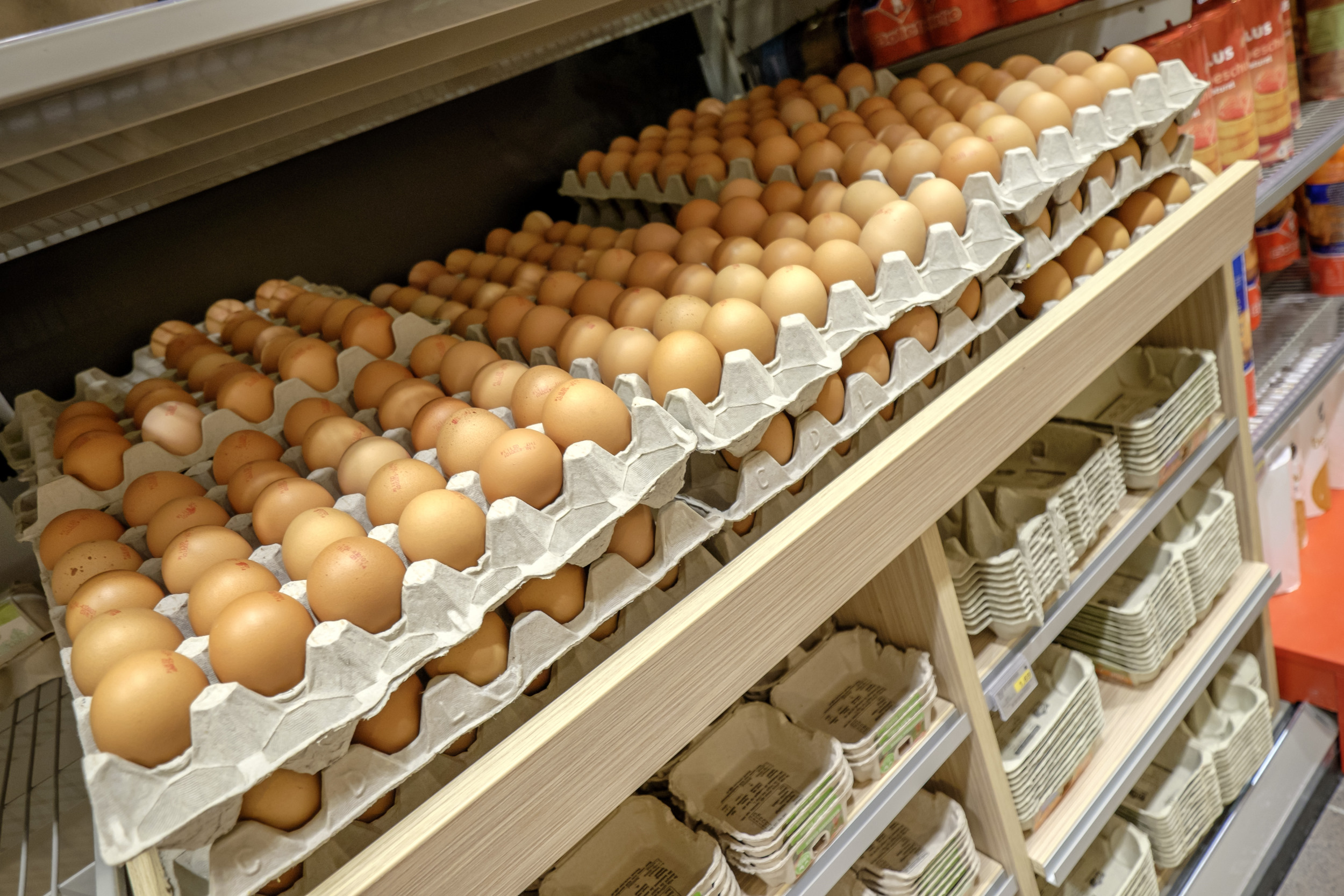 Plus supermarkt ei egg eierdoos