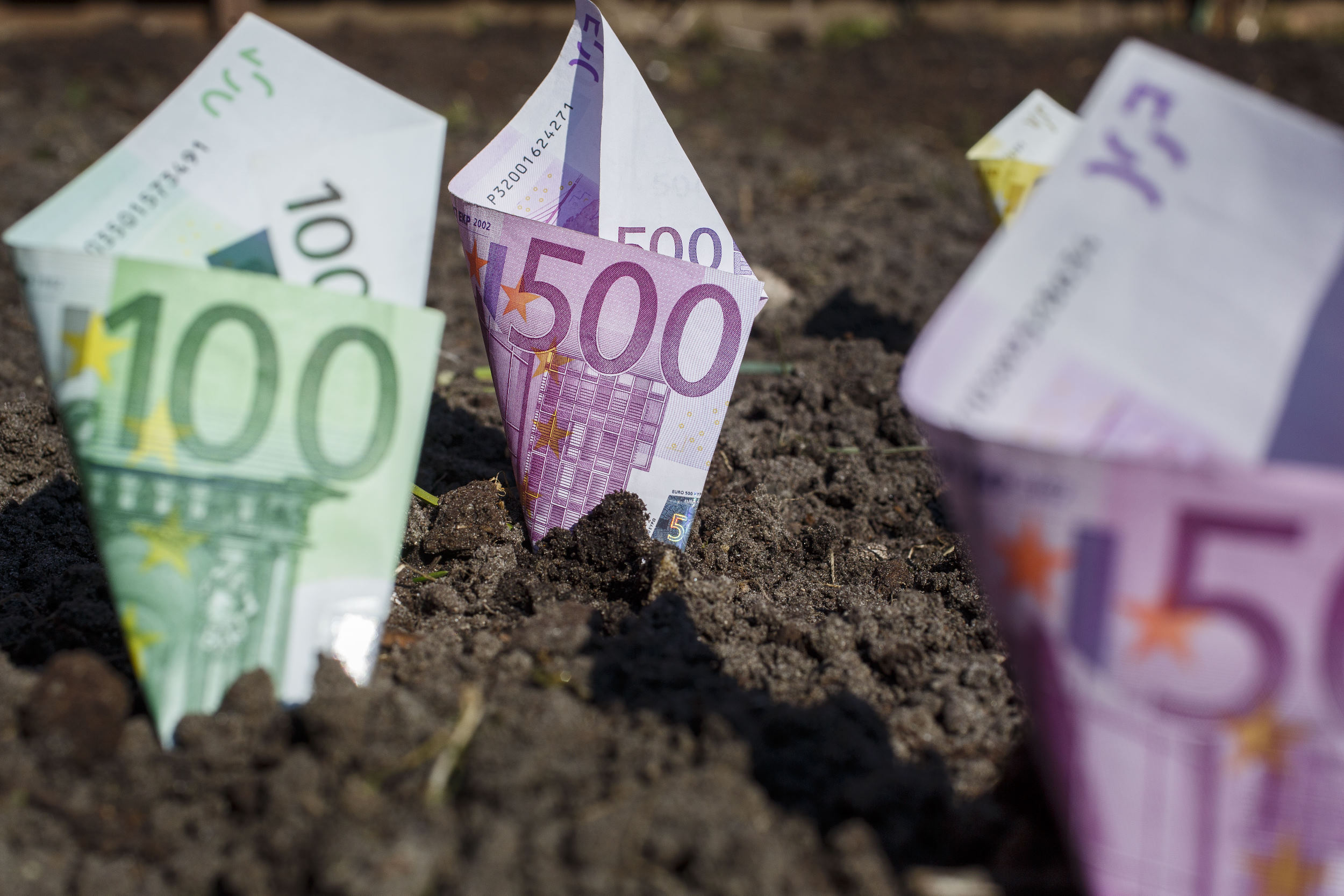 geld, money, euro, sparen, savings, groeien, grow, briefgeld, papiergeld, bills, contant, cash, grond